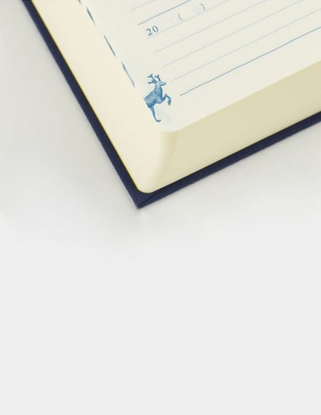 Agenda giornaliera Midori 10 anni blu vista dettaglio pagina