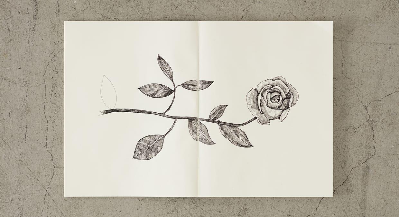 quaderni MD PAPER Notebook  A5 Blank vista con disegno su due pagine